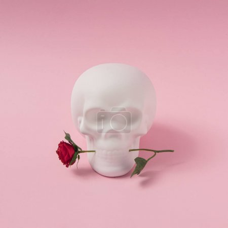 Skull with rose flower. Minimal romantic love concept. Halloween pink background.